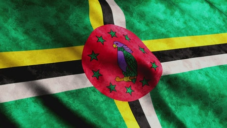 Dominica flag moving with the wind