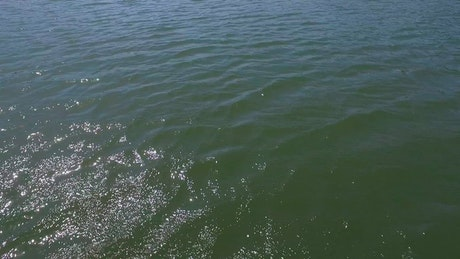 Drone flying low across a lake