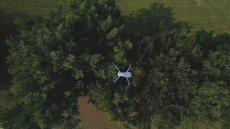 Drone view over trees