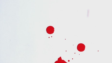 Drops of blood falling on a white surface