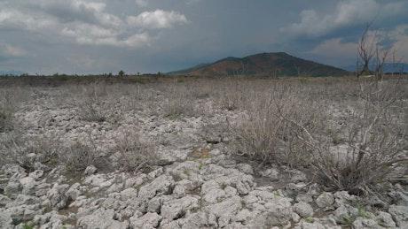 Dry lake soil