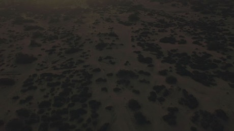 Dry landscape and a dusty horizon