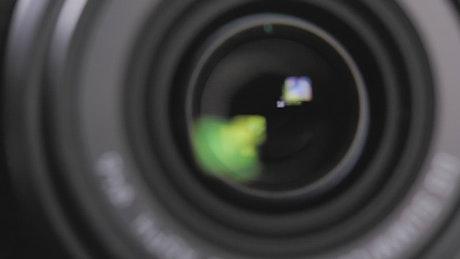 DSRL camera lens & shutter