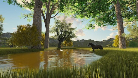 Ducks and a horse on a lake in the forest