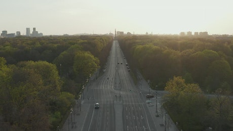 Empty avenue surrounded by trees