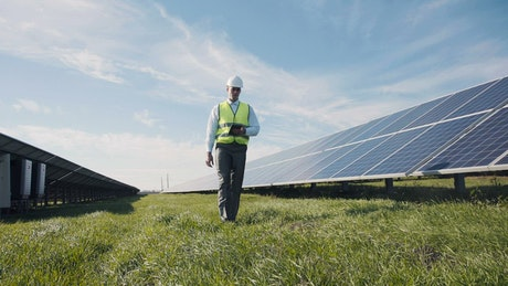 Engineer walking through a field with solar panels