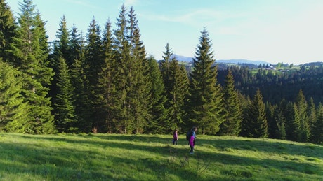 Family taking a walk in the meadow next to the forest