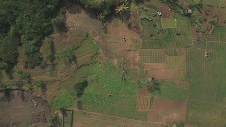 Farmlands and tiny houses