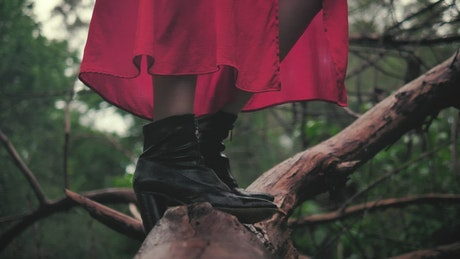 Feet of a woman standing on a large branch seen up close