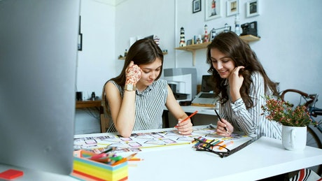 Female architects working on a project at an office