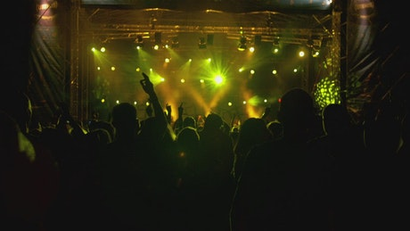 Festival crowd at night