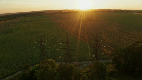 Field and powerlines