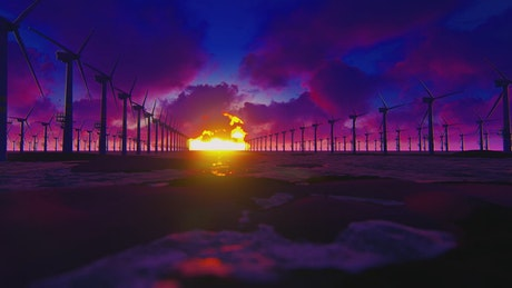 Field of wind turbines during sunset