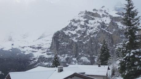 Fir trees in snowy mountain town