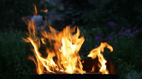 Fire burning in a garden