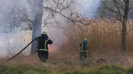 Firefighters and hoes extinguishing the fire