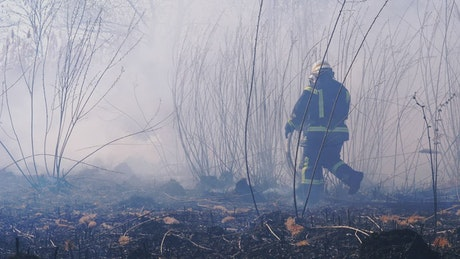 Firefighters extinguishing a fire in the woods