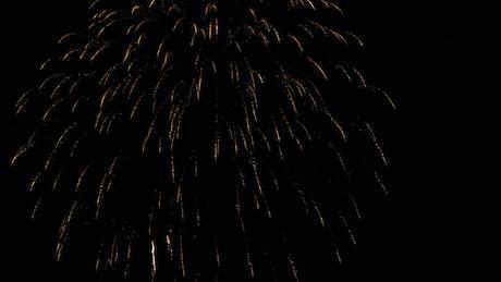 Firework celebration at midnight