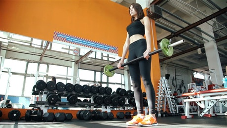 Fitness tall girl working out at the gym