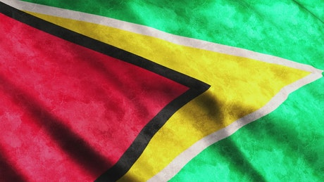 Flag of the country Guyana in South America