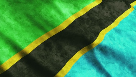 Flag of the country of Tazmania in Africa