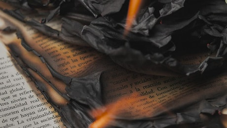 Flames burning the pages of a book, close up view