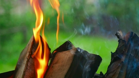 Flames burning wood chunks