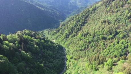 Flight through the green mountains