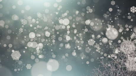 Floating snow particles, Christmas concept
