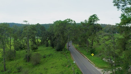 Flying over a road that crosses between nature
