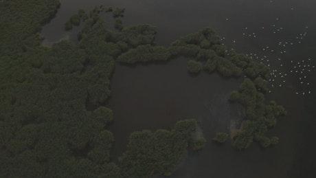 Flying over flooded fields