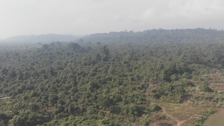 Flying over hills covered with trees