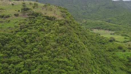 Flying over tree-covered hills