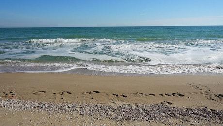 Footprints along the shore