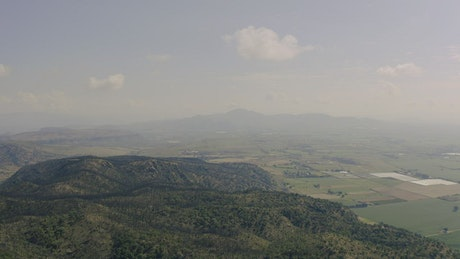 Forest in the mountains, aerial view