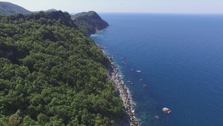 Forested mountains, cliffs, and the ocean