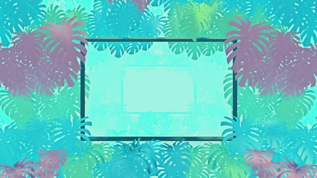 Frames surrounded by tropical tree leaves