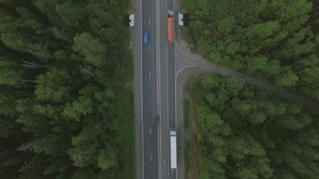 Freight trucks heading through a forest