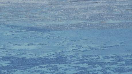 Frozen chunks on the Hudson