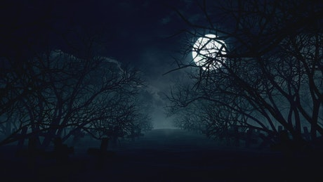 Full moon in the forest on Halloween