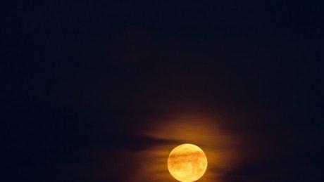 Full moon rising in the night sky