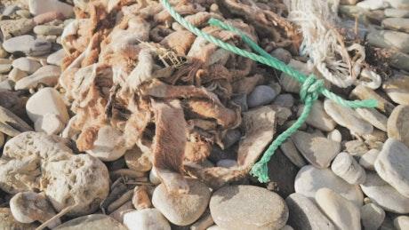 Garbage thrown in nature