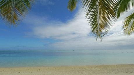 Gentle breeze across tropical sand