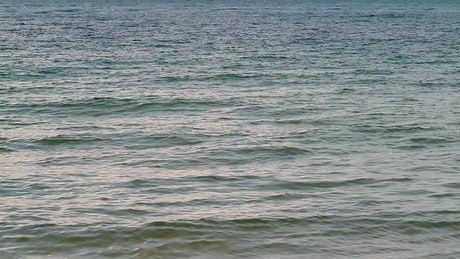 Gentle sea water near the shore