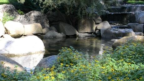 Gentle stream in a public garden