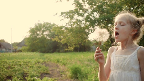 Girl blowing a dandelion flower