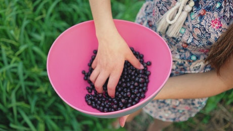 Girl holding a bowl with black currant berries