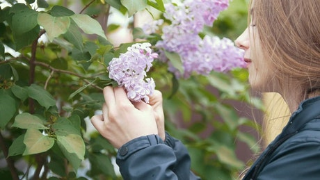Girl plucks flowers from a tree and smells them
