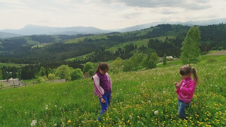 Girls cutting flowers in the meadow