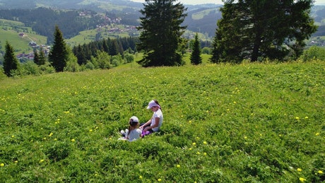 Girls play sitting on the meadow